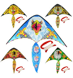 Воздушный змей M 2893 (100шт) ширина100см,длина52см,хвост50см,струна30м,ткань,5вид,в кульке,9-73-1с