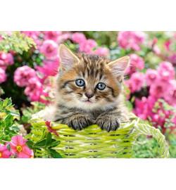 Пазлы Castorland 100 эл. Котёнок в цветочном саду
