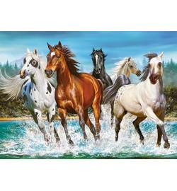Пазлы Castorland 200 эл. Лошади