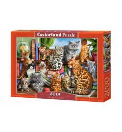 Пазлы Castorland 2000 эл. Кошки